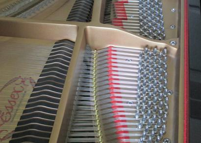 Essex Grand Piano EGP 155 designed by Steinway & Sons dampers
